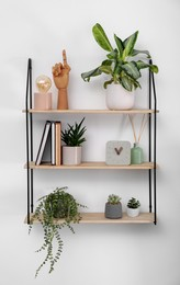 Shelving unit with beautiful houseplants, book and decor on light wall
