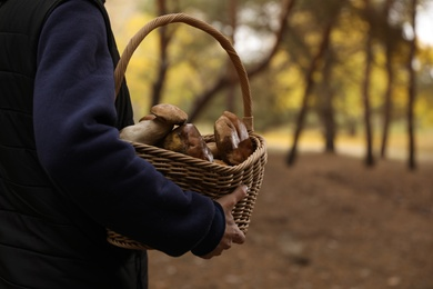 Man with basket full of wild mushrooms in autumn forest, closeup