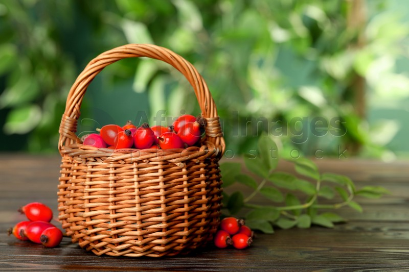 Ripe rose hip berries with green leaves on wooden table outdoors. Space for text