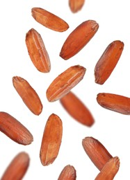 Many brown rice falling on white background. Vegan diet