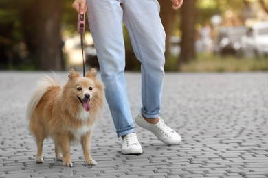 Woman with her cute dog walking on city street. closeup