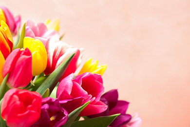 Beautiful spring tulips on light pink background, closeup. Space for text
