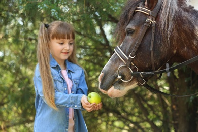 Cute little girl feeding her pony with apple in green park