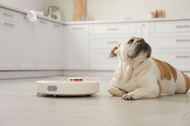Robotic vacuum cleaner and adorable dog on floor in kitchen