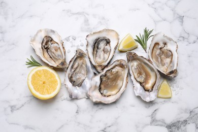 Fresh oysters with lemon and rosemary on white marble table, flat lay