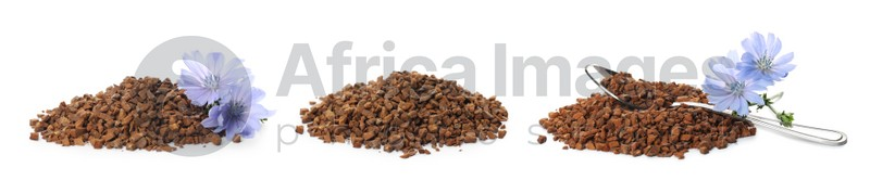 Set with chicory granules on white background. Banner design