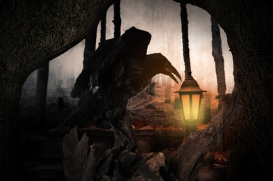 Black crow on old tree in abandoned misty park. Fantasy world