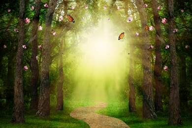 Fantasy world. Magic forest with beautiful butterflies and sunlit way between trees