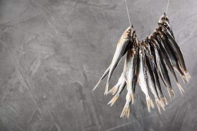Dried fish hanging on rope against grey background, space for text