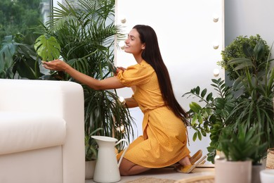 Woman taking care of houseplants indoors. Interior design