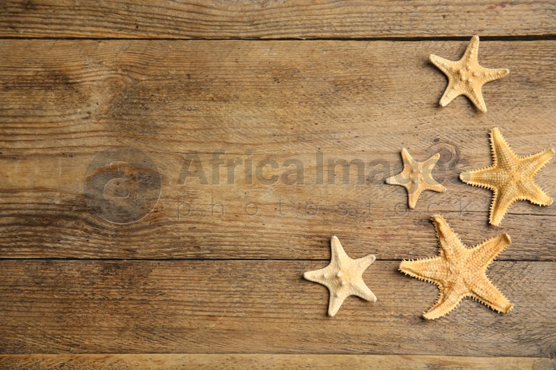 Beautiful sea stars on wooden background, flat lay. Space for text