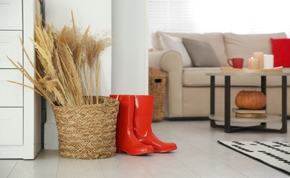 Red boots and spikelets on floor indoors. Cozy living room interior inspired by autumn colors