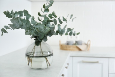 Beautiful eucalyptus branches on countertop in kitchen, space for text. Interior element