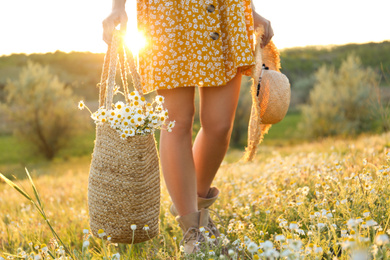 Woman with straw hat and handbag full of chamomiles walking in meadow, closeup