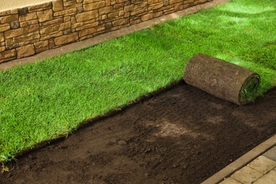 Laying grass sods at backyard. Home landscaping