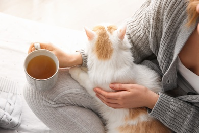 Woman with cute fluffy cat and tea on light background, closeup
