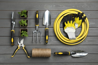 Flat lay composition with gardening tools and green plants on grey wooden background