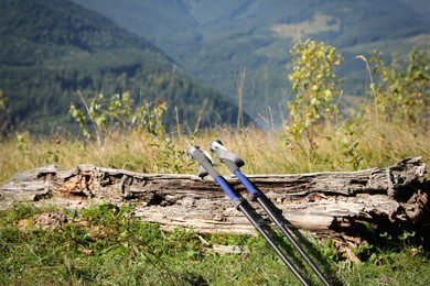 Pair of trekking poles on grassy hill in mountains