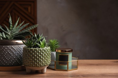 Beautiful Haworthia and Gasteria in pots with decor on wooden table, space for text. Different house plants