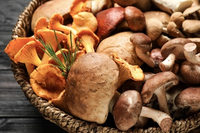 Different fresh wild mushrooms in wicker bowl on table, closeup