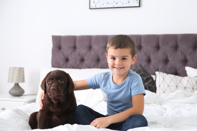 Funny puppy and little boy on bed at home. Friendly dog