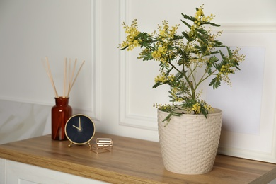 Beautiful potted mimosa, clock, photo frame and reed air freshener on wooden table near white wall