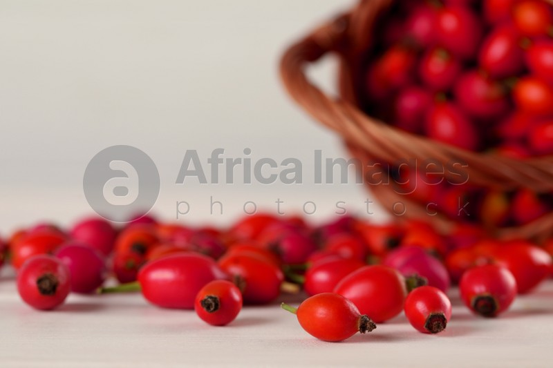 Ripe rose hip berries with wicker basket on white wooden table, closeup. Space for text
