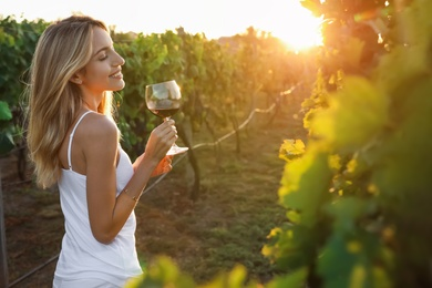 Beautiful young woman with glass of wine in vineyard on sunny day