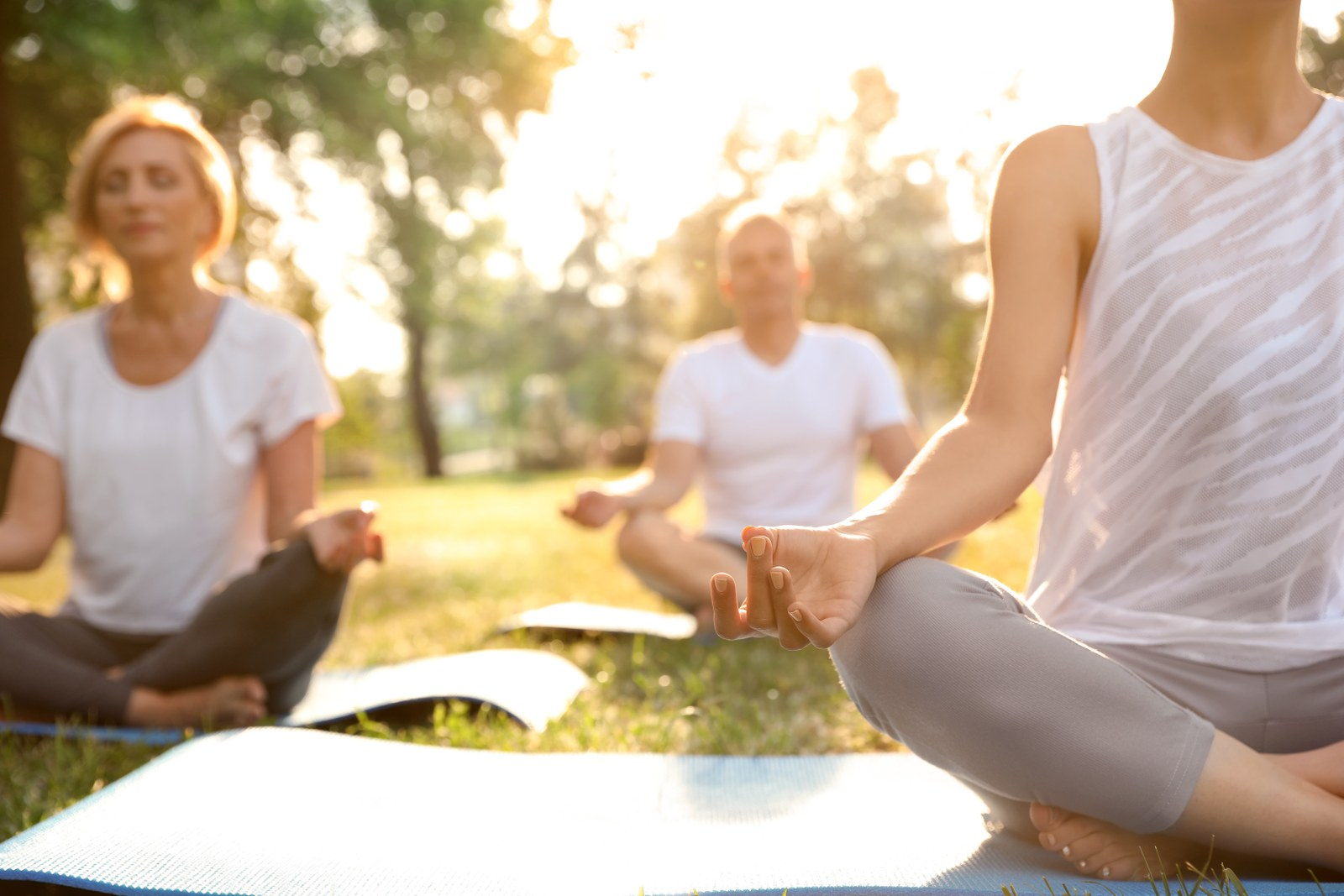 People practicing yoga in park at morning, closeup