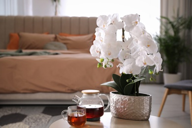 Beautiful white orchids and tea set on table in bedroom, space for text. Interior design