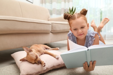 Cute little child reading book while her Chihuahua dog sleeping at home. Adorable pet
