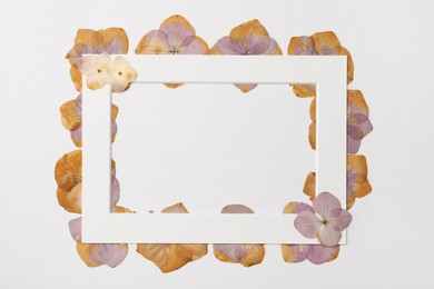 Frame with wild dried meadow flowers on white background, flat lay. Space for text