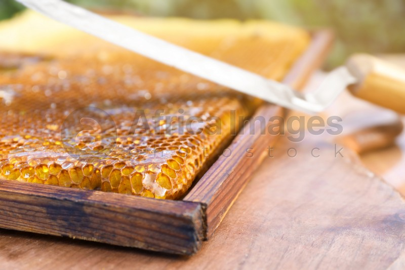 Uncapping knife and honeycomb frame on wooden table outdoors, closeup