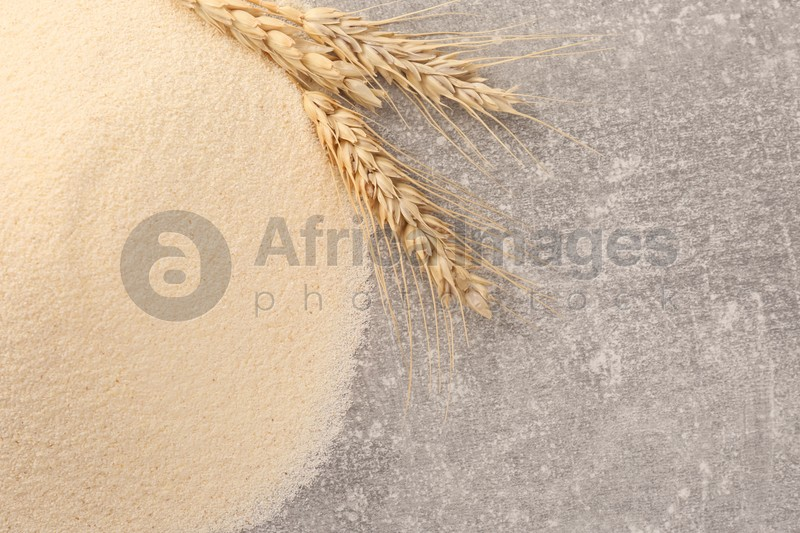 Pile of uncooked organic semolina and spikelets on grey table, flat lay. Space for text
