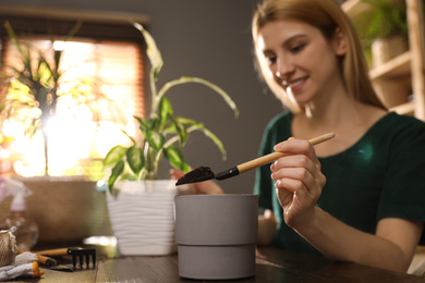 Young woman taking care of plants at home, focus on hand with shovel. Engaging hobby
