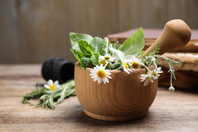 Mortar with chamomile flowers and fresh green mint on wooden table. Healing herbs