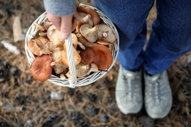 Woman holding wicker basket with fresh wild mushrooms in forest, above view
