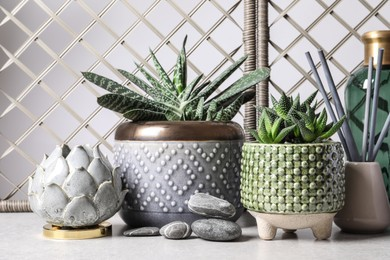 Beautiful Haworthia and Gasteria in pots with decor on grey table. Different house plants
