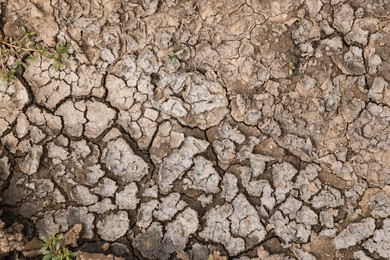 Dry textured ground surface as background, top view. Thirsty soil