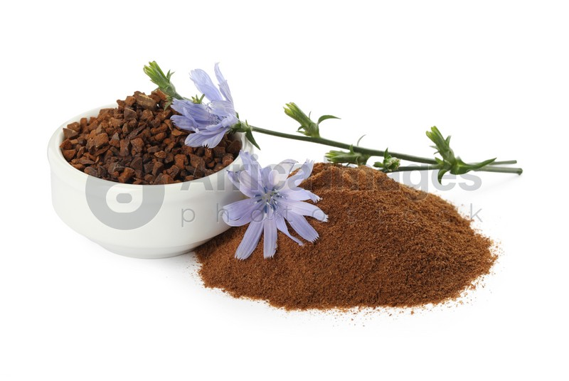 Chicory granules, powder and flowers on white background
