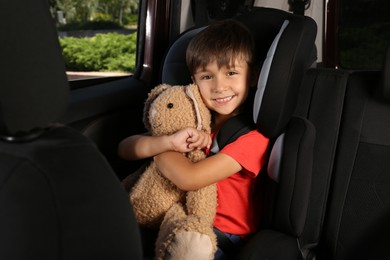 Little boy fastened with car safety belt in child seat holding toy bunny