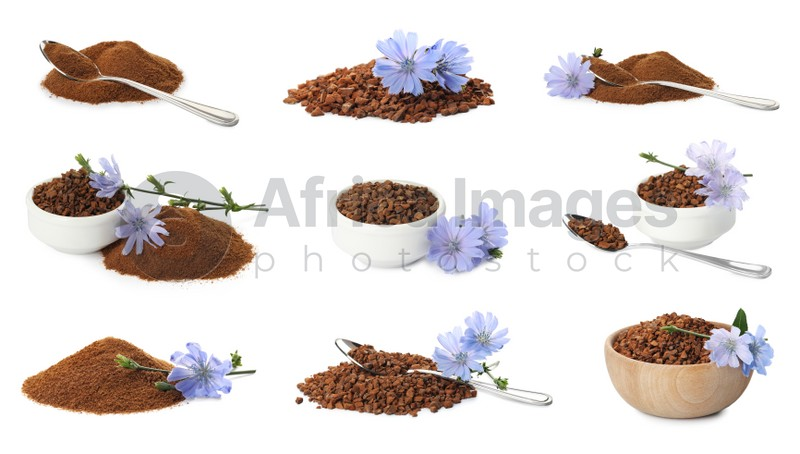 Set with chicory granules and powder on white background