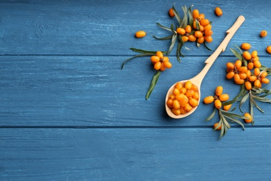 Ripe sea buckthorn berries on blue wooden table, flat lay. Space for text