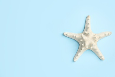 Beautiful sea star on light blue background, top view. Space for text