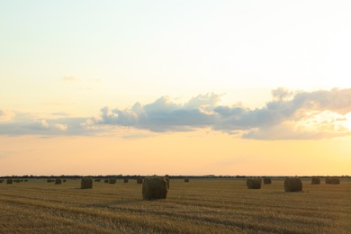 Beautiful view of agricultural field with hay bales
