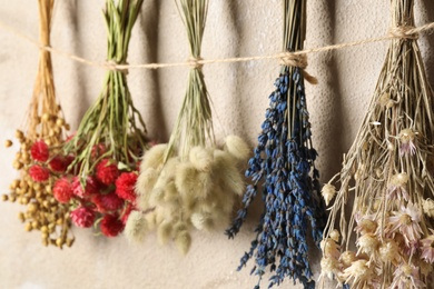 Bunches of beautiful dried flowers hanging on rope near light grey wall, closeup
