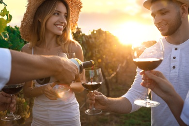 Friends tasting red wine in vineyard on sunny day, closeup