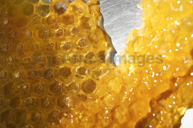 Uncapping honey cells with knife, closeup view