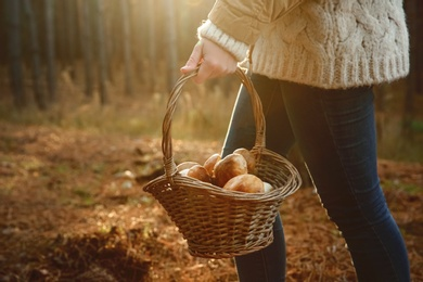 Woman carrying basket with fresh mushrooms in forest, closeup