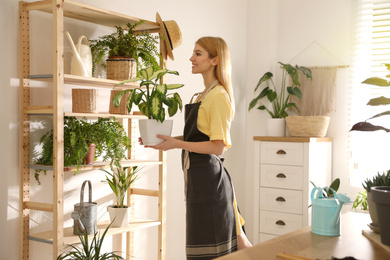 Young woman with Dieffenbachia plant at home. Engaging hobby
